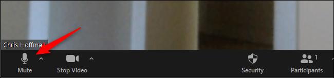 """Cliquez sur """"Muet"""" sur la barre d'outils inférieure de Zoom"""