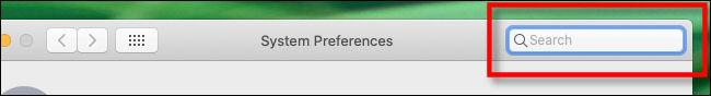 Barre de recherche des préférences système sur Mac