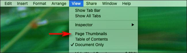 """Nous avons cliqué sur """"Afficher"""" et """"Vignettes de page"""" pour créer un raccourci clavier."""
