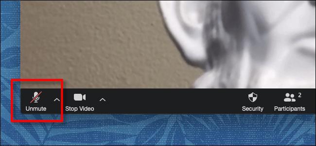 Klicken oder tippen Sie in der Symbolleiste unter Zoom auf Sound aktivieren