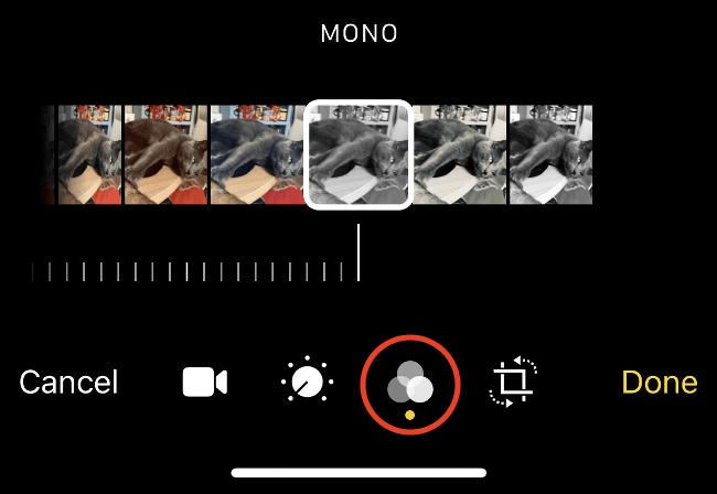 Appuyez sur l'icône Filtres.