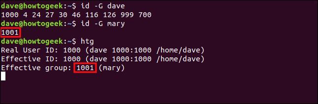 Les commandes «id -G dave», «id -G mary» et «htg» dans une fenêtre de terminal.