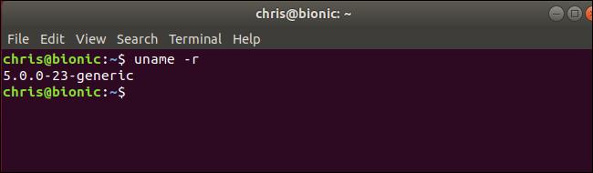 comando uname che mostra il kernel Linux 5.0 in esecuzione su Ubuntu