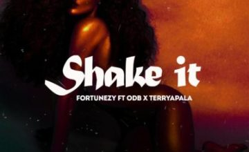 Fortunezy – Shake It ft. ODB & Terry Apala