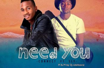 Connect ft Sly - Need You
