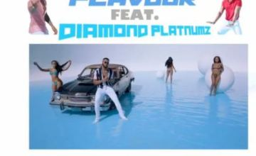 Flavour ft Diamond Platnumz – Time To Party
