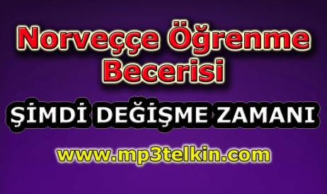 mp3telkin-youtube-norvecce-ogrenme-becerisi