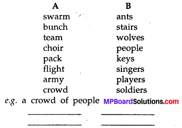 MP Board Class 8th Special English Chapter 3 The False Flight 6