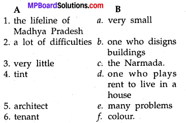 MP Board Class 8th Special English Revision Exercises 1 1