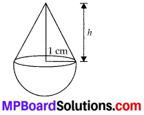 MP Board Class 10th Maths Solutions Chapter 13 Surface Areas and Volumes Ex 13.2 1