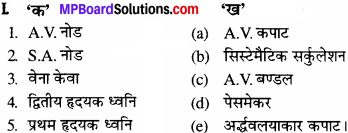 MP Board Class 11th Biology Solutions Chapter 18 शरीर द्रव तथा परिसंचरण - 1