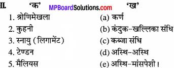 MP Board Class 11th Biology Solutions Chapter 20 गमन एवं संचलन - 4