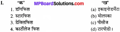 MP Board Class 11th Biology Solutions Chapter 4 प्राणि जगत - 2