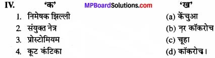 MP Board Class 11th Biology Solutions Chapter 7 प्राणियों में संरचनात्मक संगठन - 15