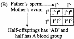 MP Board Class 12th Biology Important Questions Chapter 5 Principles of Inheritance and Variation 20