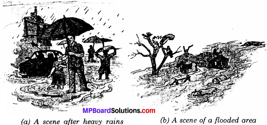 MP Board Class 6th Science Solutions Chapter 14 Water 2