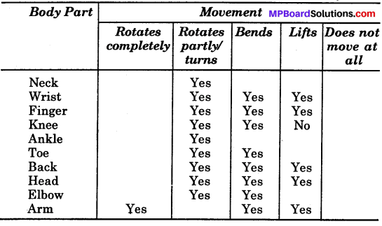 MP Board Class 6th Science Solutions Chapter 8 Body Movement img 3