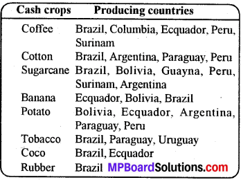 MP Board Class 8th Social Science Solutions Chapter 16 South America-Economic Features 2
