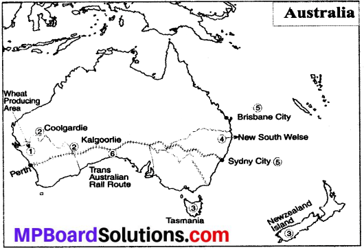 MP Board Class 8th Social Science Solutions Chapter 24 Economic Development of Australia Continent