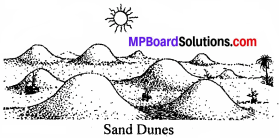 MP Board Class 8th Social Science Solutions Chapter 7 Changing Outer Forces img 5