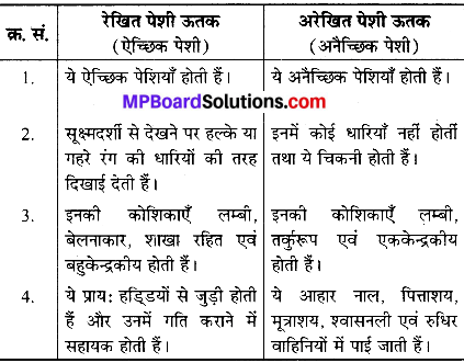 MP Board Class 9th Science Solutions Chapter 6 ऊतक image 23