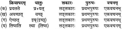 MP Board Class 10th Sanskrit Solutions Chapter 18 महाराजः छत्रसालः img 3