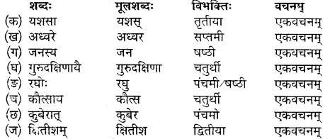 MP Board Class 10th Sanskrit Solutions Chapter 19 गुरुदक्षिणा img 3