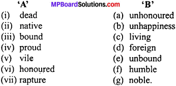 MP Board Class 11th Special English Vocabulary Exercises Important Questions 1