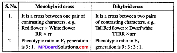 MP Board Class 12th Biology Solutions Chapter 5 Principles of Inheritance and Variation 3