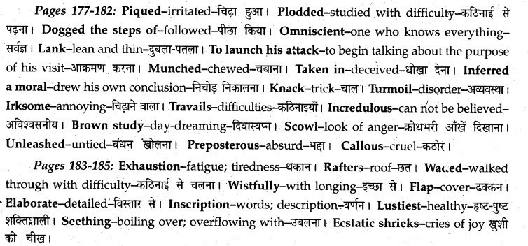 MP Board Class 12th English A Voyage Solutions Chapter 20 Swami and Friends img 3
