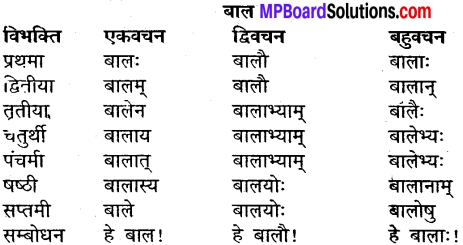 MP Board Class 9th Sanskrit व्याकरण शब्द रूप img-2
