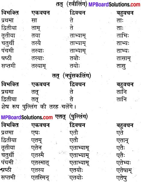 MP Board Class 9th Sanskrit व्याकरण शब्द रूप img-27