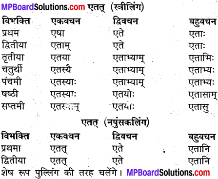 MP Board Class 9th Sanskrit व्याकरण शब्द रूप img-28