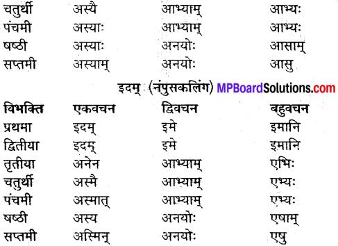 MP Board Class 9th Sanskrit व्याकरण शब्द रूप img-31