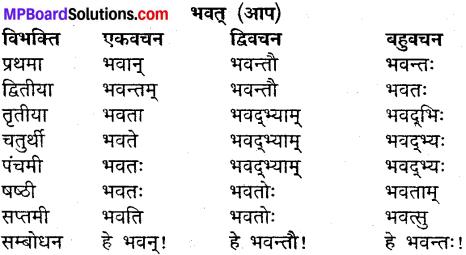 MP Board Class 9th Sanskrit व्याकरण शब्द रूप img-9