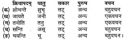 MP Board Class 9th Sanskrit Solutions Chapter 3 सुभाषितानि img-4