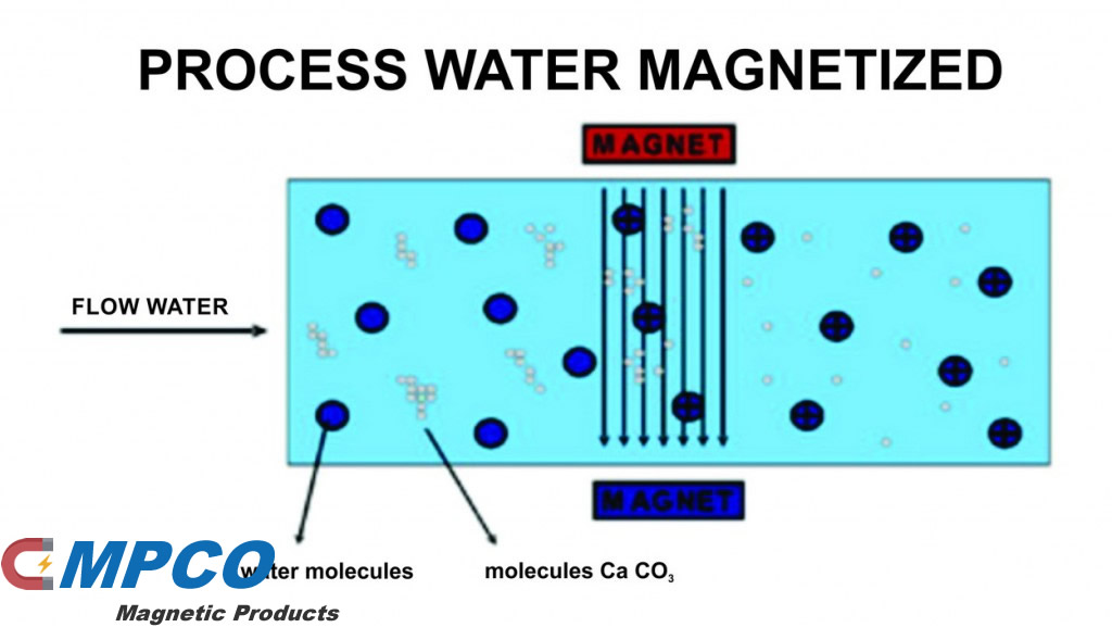 Magnetic Fields and Water