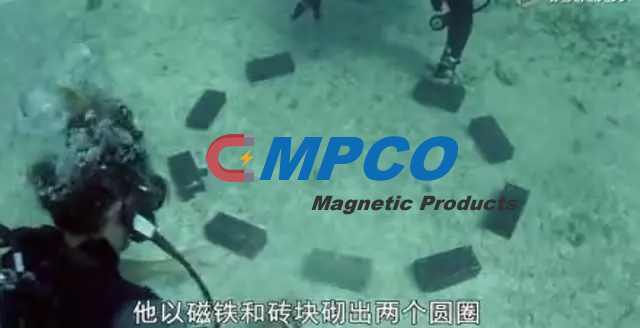 sharks repel magnets