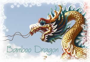 Practicing Cross Cultural Communication: The Bamboo Dragon Image