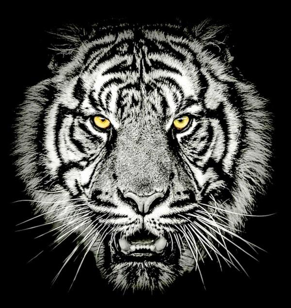 Τίγρης Ασπρόμαυρη Ψηφιακή Εκτύπωση
