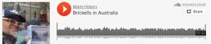 Cesar Becerra - The Brickells in Australia