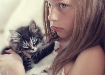 Jak opiekować się kotem