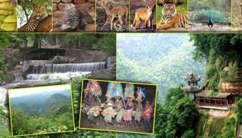 यावल अभयारण्य (Yawal Wildlife Sanctuary)