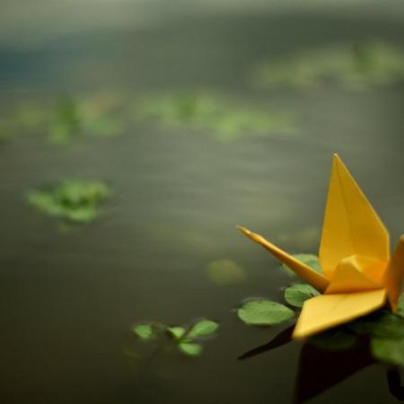 Yellow_paper_cranes-Life_photography_HD_wallpaper_1440x900