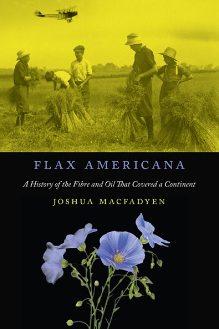 Image result for flax americana