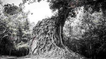 柬幣(Riel)上的吳哥風景,您去過幾個