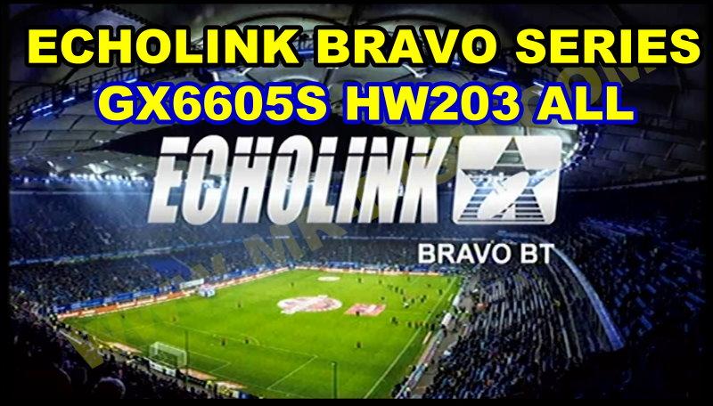 ECHOLINK BRAVO GX6605S HW203 NEW SOFTWARE
