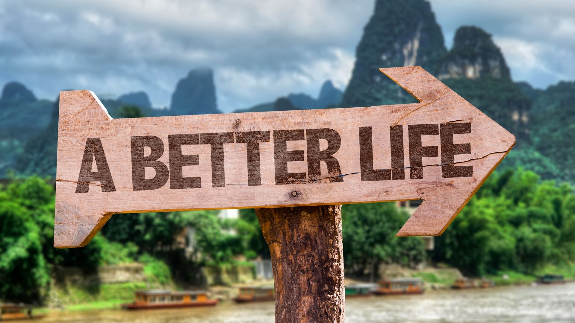 wooden arrow sign with the words 'better life' etched on it