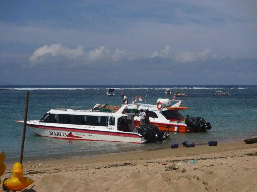 Marlin Fast Boats