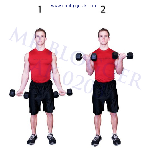 How to lose weight in your arms workout exercise tips how to lose weight in your arms ccuart Choice Image